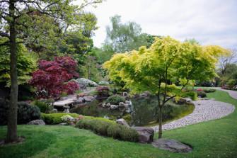 Voda v zahradě – co zvážit než si pořídíte zahradní jezírko