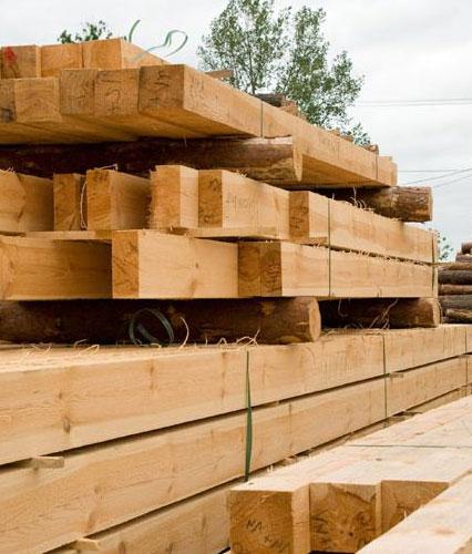 Borovice má krásnou vůni i texturu dřeva, ale je problém nalézt dlouhé a rovné kusy, proto se často lepí.