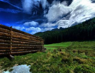 Jaké dřevo na stavbu roubenky?