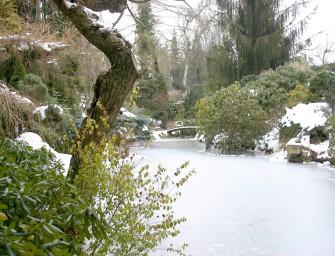 Leden na zahradě