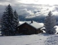 Solární panely a sníh