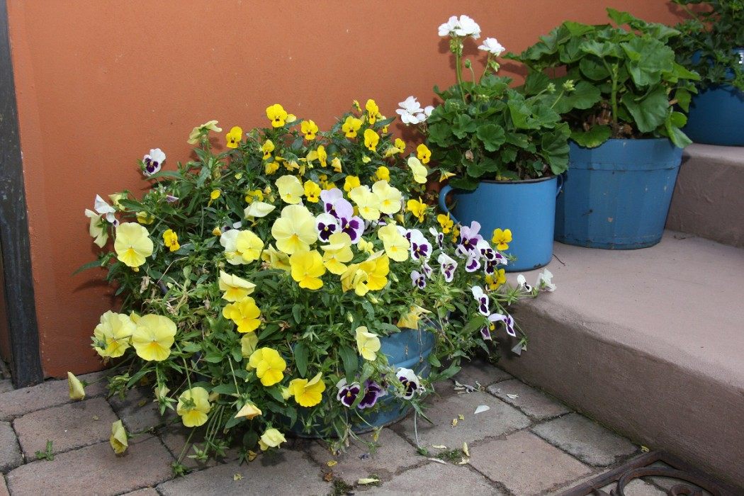 keramika v zahradě