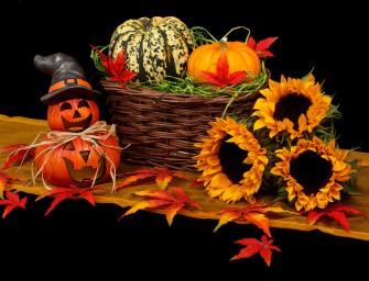 Podzimní dekorace z okrasných dýní
