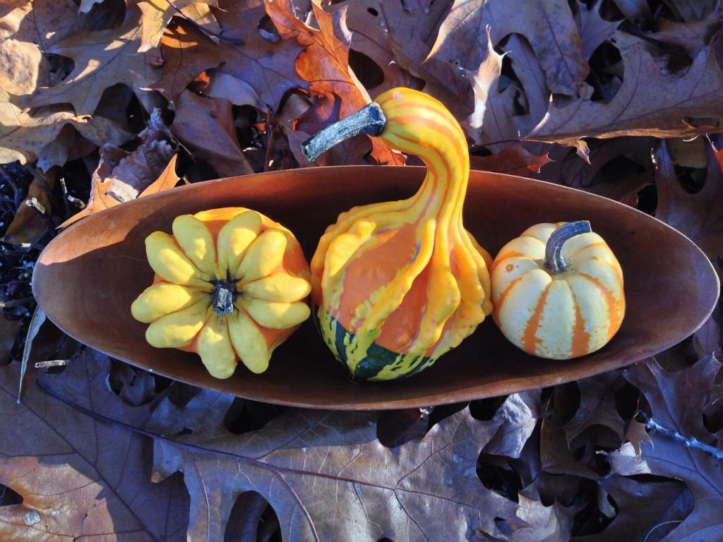 položte dýně na podlouhlý tácek a doplňte je spodaným listím, kaštany a žaludy.