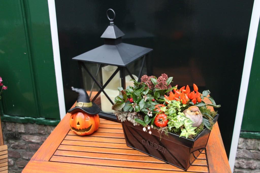 Vytvořte si podzimní aranžmá. Doplněné o mihotavé světlo svíčky v lucerně vytvoří tu pravou podzimní nostalgickou náladu.