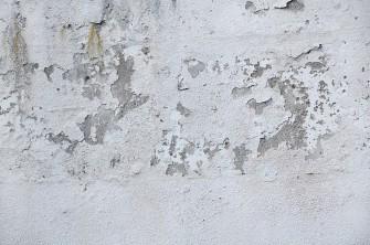 Jak bojovat s plísní v interiéru?