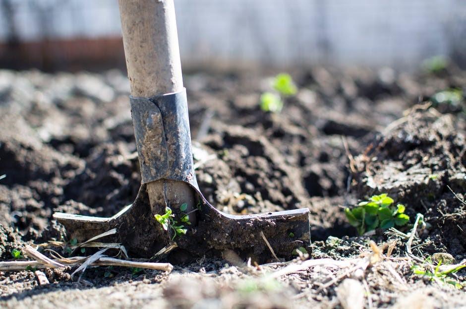 Každá zahrádka potřebuje z jara dostatek péče - pro zajištění dobré úrody je nutné důkladně připravit záhony.