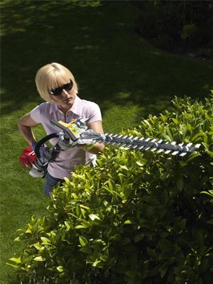 Péče o živý plot bude hračkou s AKU programem od HONDY.