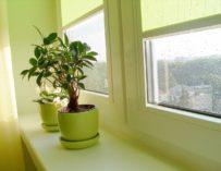 Plastová okna a větrání