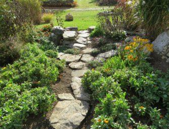 Nechoďte na zahradě po trávníku, zahradní cesty a jak je vybudovat