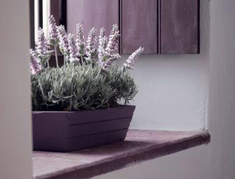 Nápadité truhlíky a květníky