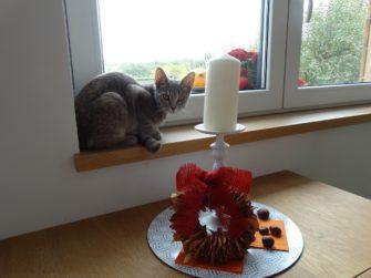Když za okno vklouzne podzim