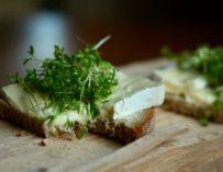 Řeřicha – zdroj vitamínů