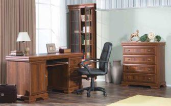 Jak zvládnout home office v klidu a bez bolestí zad
